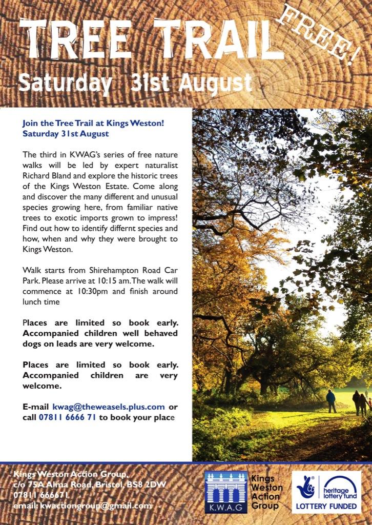 tree walk poster