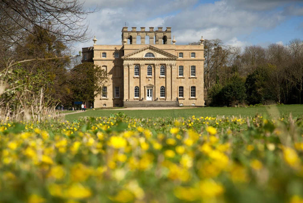 Early spring buttercups in front of the newly revealed main front of Kings Weston House