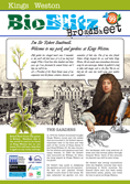 Bioblitz broadsheet-1