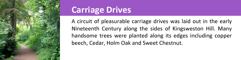 Carriage drives