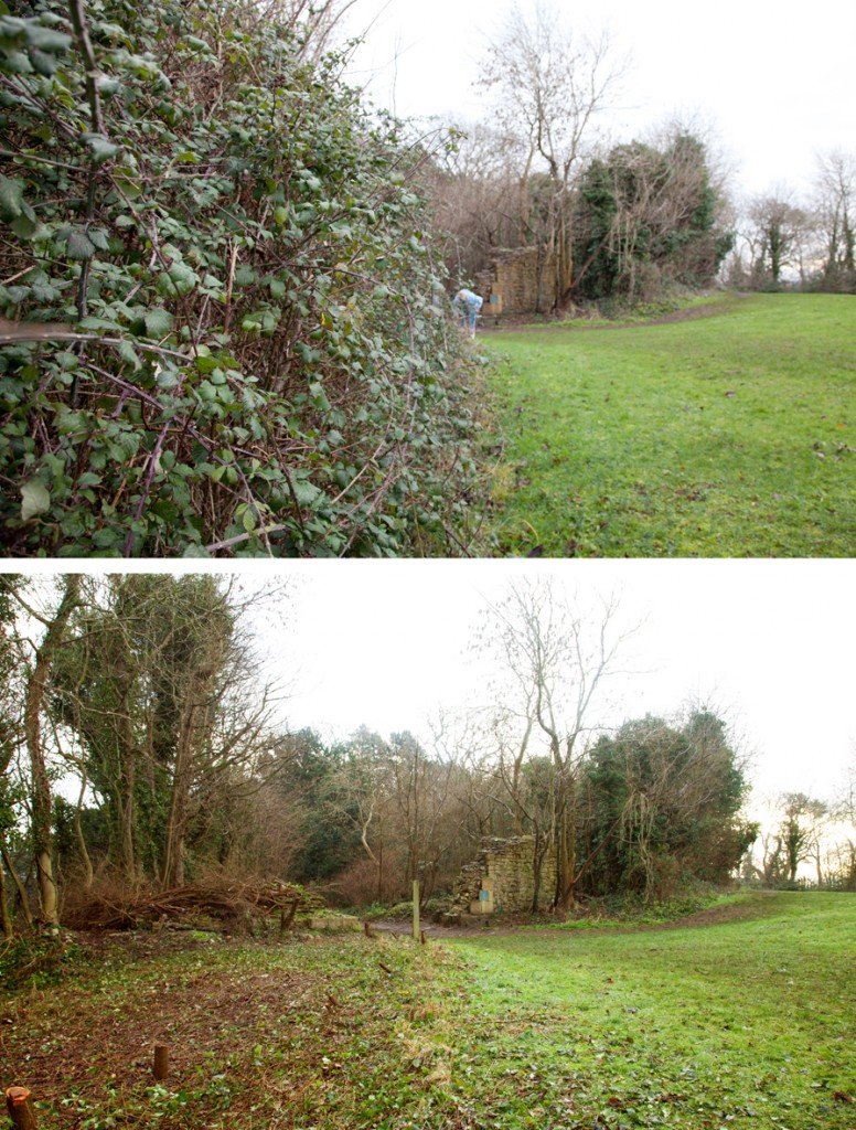 Looking towards the ruins of Penpole Lodge before and after the 10ft high hedge of brambles was removed by KWAG.