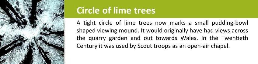 circle of limes