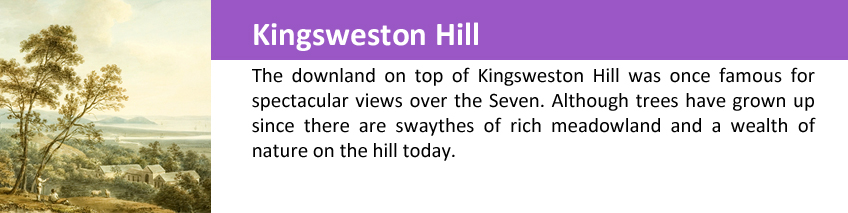 kingsweston hill