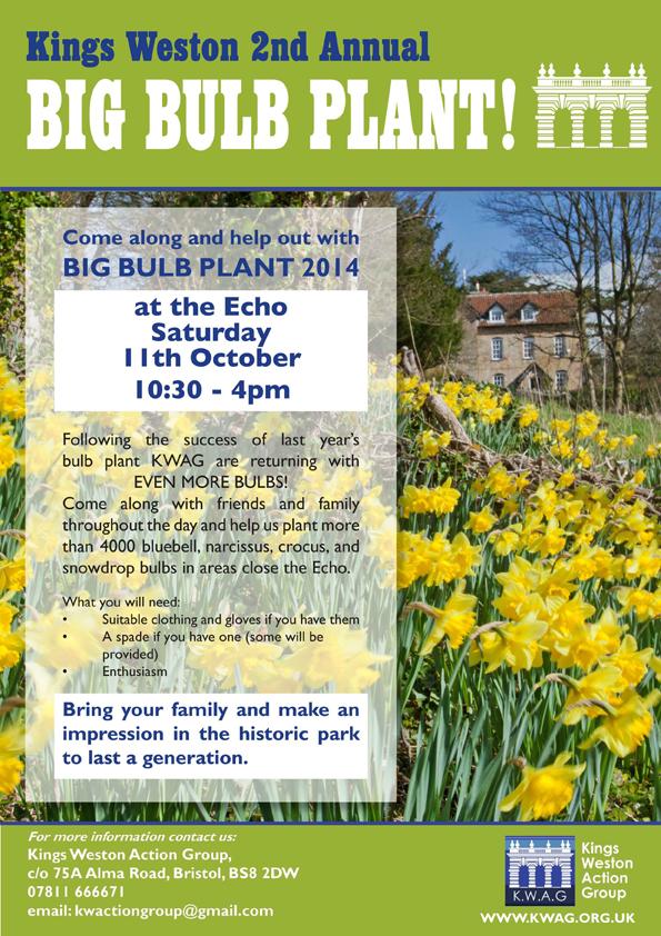 big bulb plant 2014b