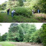 KWAG volunteers get to work at the start of the event. A before and after view looking from the main avenue back into the Circle and towards the avenue to Penpo